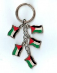 Palestine flag key chains